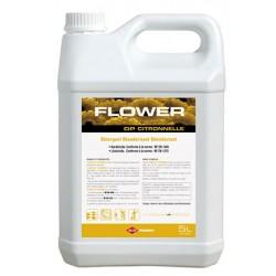 Détergent désodorisant désinfectant Flower DP citronnelle (2 x 5L)