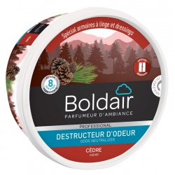 Lot de 6 unités Boldair gel destructeur d'odeurs cèdre 300 g